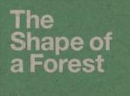 The Shape of a Forest gan Jemma King