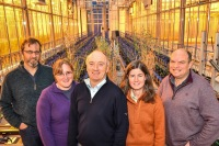 Professor Athole Marshall with oat breeding team members in the BBSRC funded National Plant Phenomics Centre at IBERS.