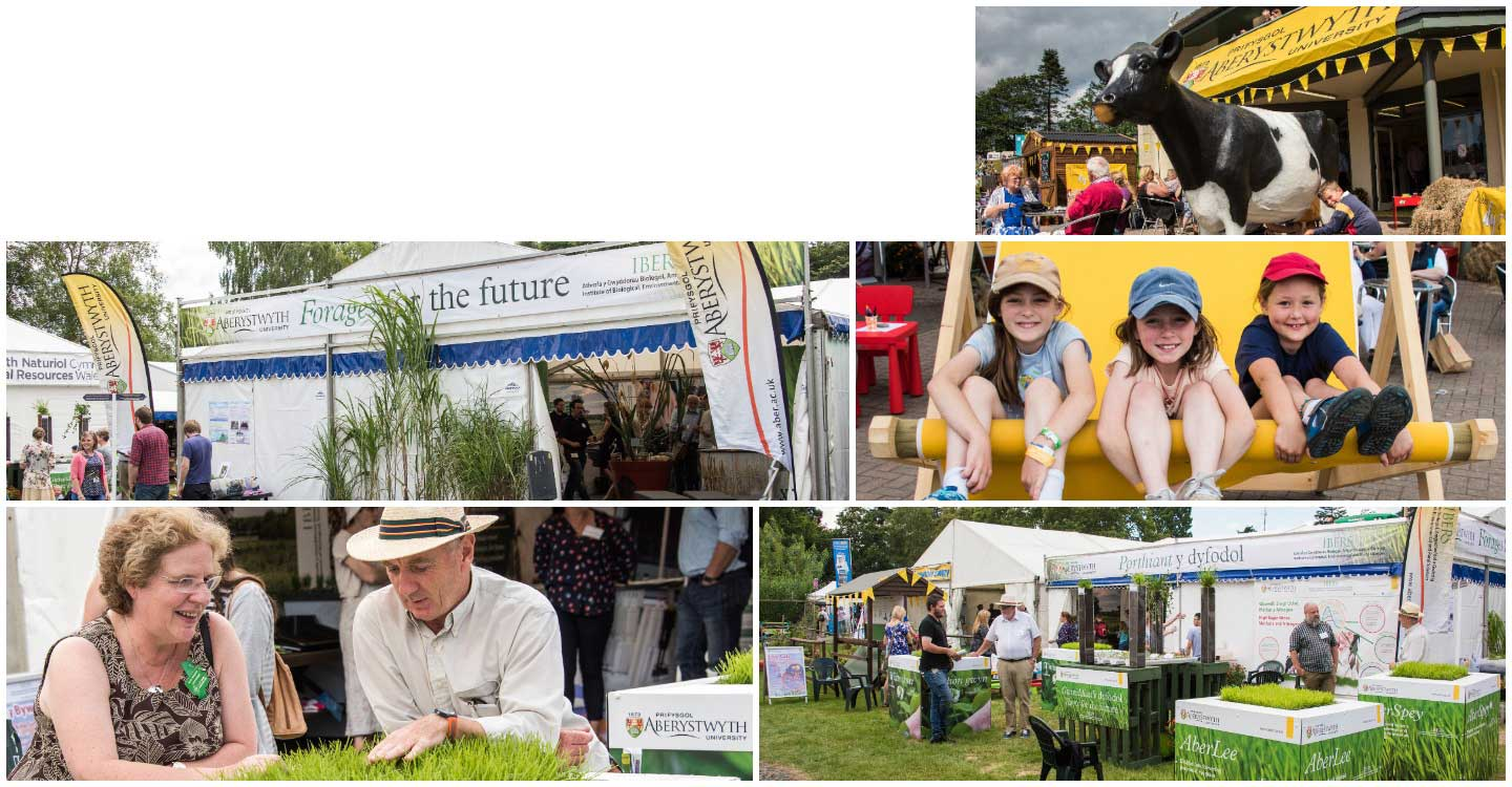 Images of IBERS, Aberystwyth at the 2017 Royal Welsh Show