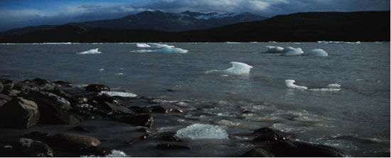 Icebergs in Lago Grey, South Patagonian Icefield. Photo: N. F. Glasser
