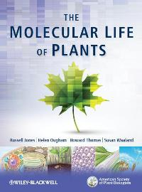 The cover of The Molecular Life of Plants