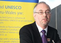 Professor Colin McInnes, Director of the Centre for Health and International Relations