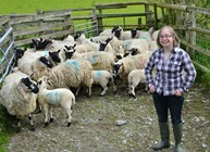 Sarah Beynon IBERS PhD student with Beulah sheep