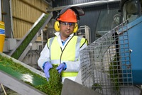 Processing ryegrass for products at BEACON, Aberystwyth University