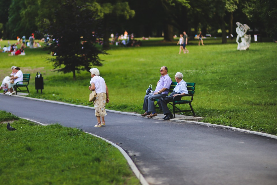 Older adults in the park